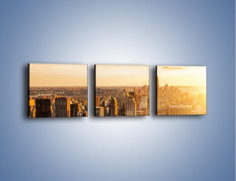 Obraz na płótnie – Zachód słońca nad Nowym Jorkiem – trzyczęściowy AM550W1