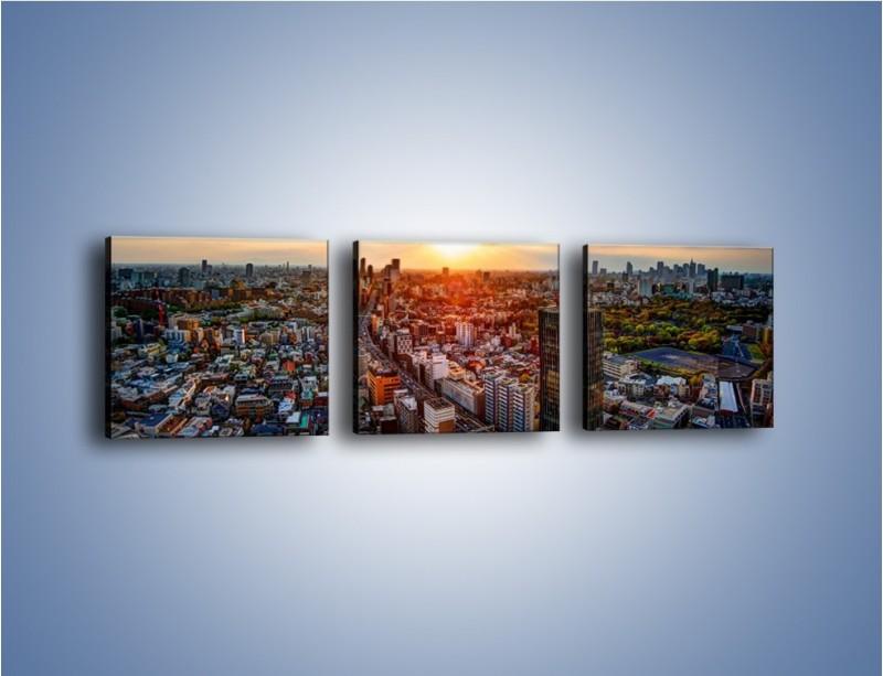 Obraz na płótnie – Panorama miasta o zachodzie słońca – trzyczęściowy AM587W1