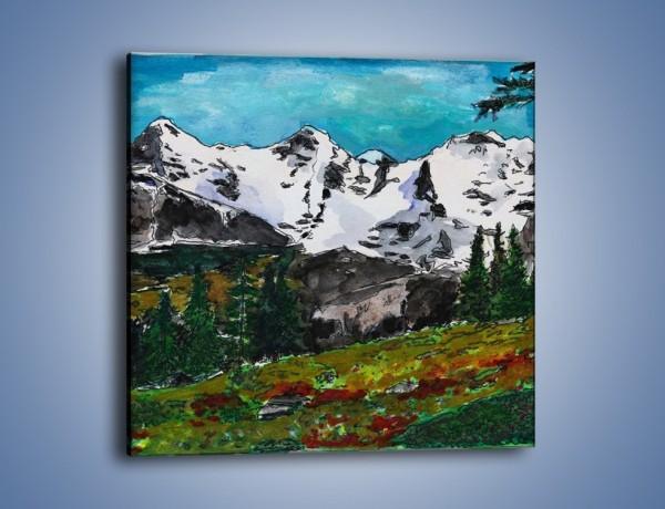 Obraz na płótnie – Góry i ich roślinność – jednoczęściowy kwadratowy GR038