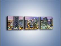 Obraz na płótnie – Centrum Miami – trzyczęściowy AM702W1