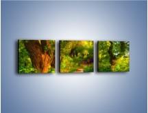 Obraz na płótnie – Drewniana kładka przez las – trzyczęściowy GR007W1