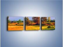 Obraz na płótnie – Kolory naszej wsi – trzyczęściowy GR009W1