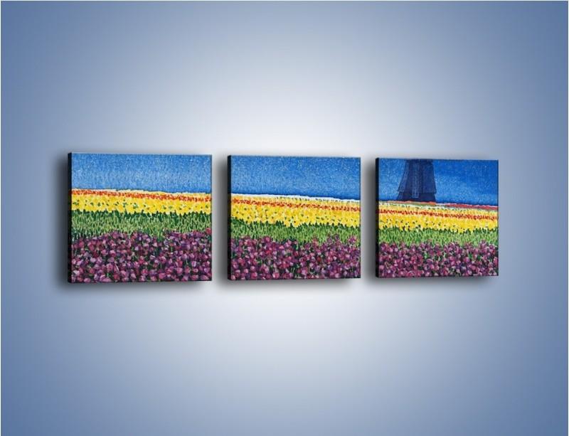 Obraz na płótnie – Spacer przez kolorowe maki – trzyczęściowy GR049W1