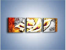 Obraz na płótnie – Kalie i ogień – trzyczęściowy GR128W1