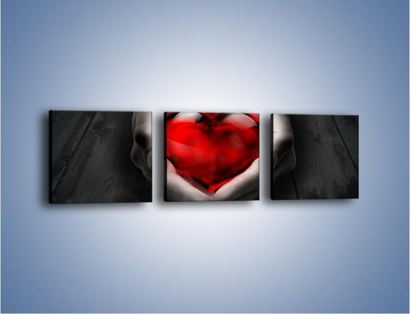 Obraz na płótnie – Serce zamknięte w dłoni – trzyczęściowy GR159W1