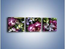 Obraz na płótnie – Kwiaty w różnych odcieniach – trzyczęściowy GR318W1