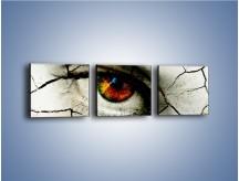 Obraz na płótnie – Popękane wspomnienia – trzyczęściowy GR406W1