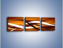 Obraz na płótnie – Harmonia w ruchu – trzyczęściowy GR421W1