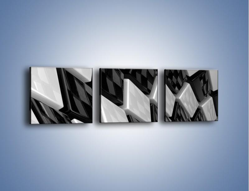 Obraz na płótnie – Czarne czy białe – trzyczęściowy GR425W1