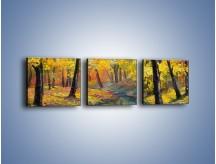 Obraz na płótnie – Jesienną pora w lesie – trzyczęściowy GR434W1