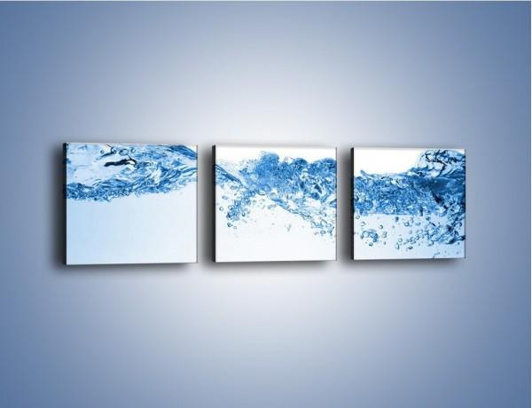 Obraz na płótnie – Woda nie wszędzie wzburzona – trzyczęściowy GR523W1