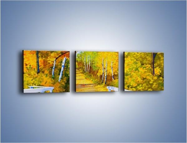Obraz na płótnie – Alejką w słoneczna jesień – trzyczęściowy GR540W1