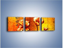 Obraz na płótnie – Maki z dodatkami – trzyczęściowy GR574W1