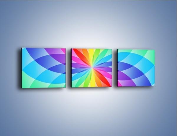 Obraz na płótnie – Płatki bardzo kolorowe – trzyczęściowy GR590W1