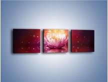 Obraz na płótnie – Kwiat zabłyszczał ciemna nocą – trzyczęściowy GR613W1