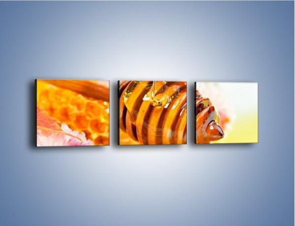 Obraz na płótnie – Zdrowy miód – trzyczęściowy JN012W1