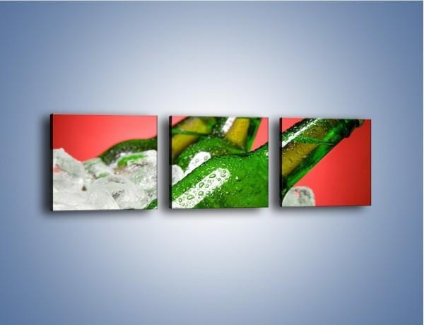 Obraz na płótnie – Zmrożone butelki piwa – trzyczęściowy JN025W1