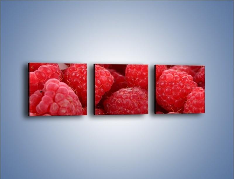 Obraz na płótnie – Zdrowe dojrzałe maliny – trzyczęściowy JN045W1