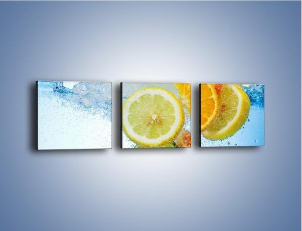 Obraz na płótnie – Zatopione plastry owoców – trzyczęściowy JN057W1