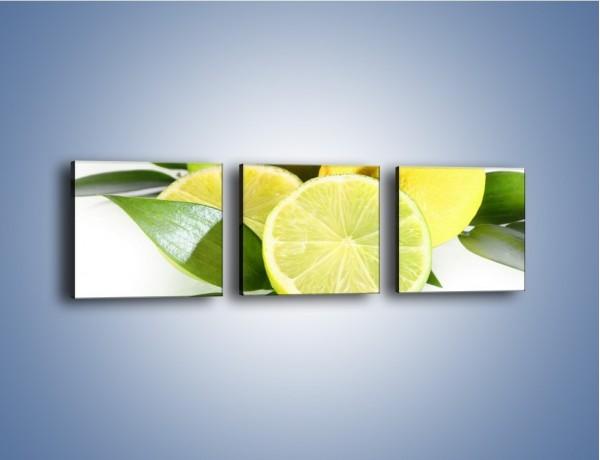 Obraz na płótnie – Mix cytrynowo-limonkowy – trzyczęściowy JN058W1