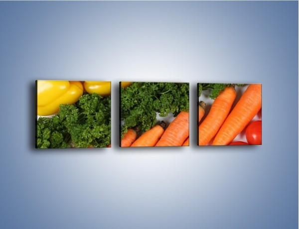 Obraz na płótnie – Warzywny porządek – trzyczęściowy JN063W1
