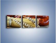 Obraz na płótnie – Chleb pszenno-kukurydziany – trzyczęściowy JN090W1