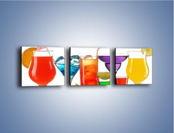 Obraz na płótnie – Wakacyjne party z alkoholem – trzyczęściowy JN092W1