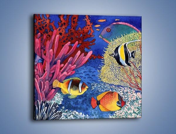 Obraz na płótnie – Podwodny świat ryb – jednoczęściowy kwadratowy GR056