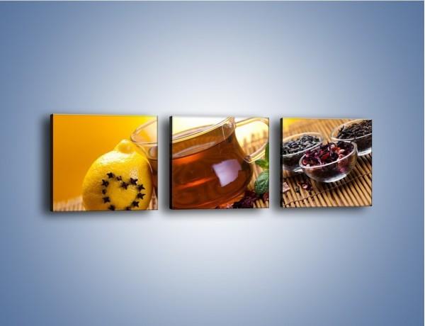 Obraz na płótnie – Herbaciane zdrowie pełne witamin – trzyczęściowy JN106W1