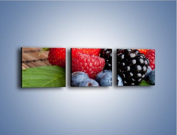 Obraz na płótnie – Dojrzałe owoce leśne – trzyczęściowy JN111W1