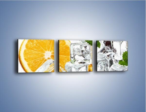 Obraz na płótnie – Pomarańczowe orzeźwienie – trzyczęściowy JN122W1