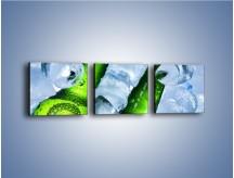 Obraz na płótnie – Czas na zimne piwko – trzyczęściowy JN148W1
