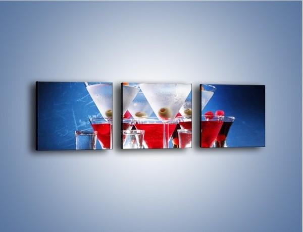 Obraz na płótnie – Martini wstrząśnięte zmieszane – trzyczęściowy JN161W1