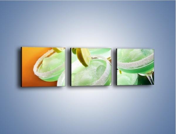 Obraz na płótnie – Zielone alkoholowe szaleństwo – trzyczęściowy JN162W1