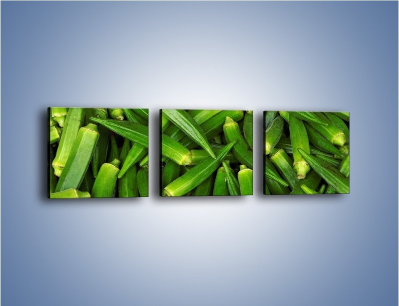 Obraz na płótnie – Warzywna egzotyka – trzyczęściowy JN191W1