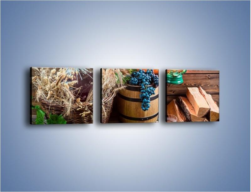 Obraz na płótnie – Wino według własnego przepisu – trzyczęściowy JN202W1