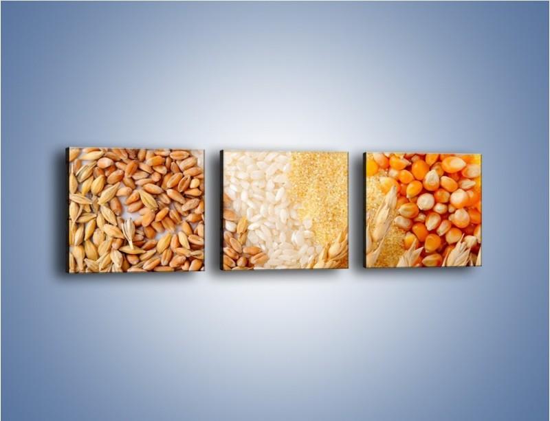 Obraz na płótnie – Ziarna pszenno-zbożowe – trzyczęściowy JN207W1