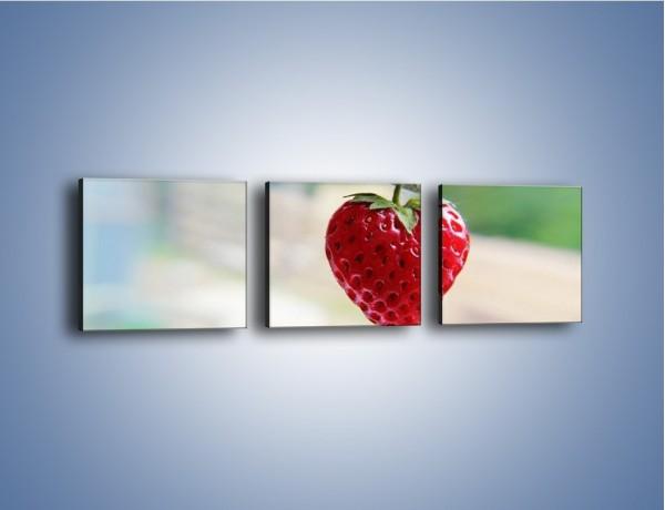 Obraz na płótnie – Wisząca truskawka – trzyczęściowy JN265W1