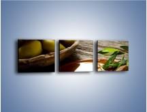 Obraz na płótnie – Bogactwa wydobyte z oliwek – trzyczęściowy JN270W1