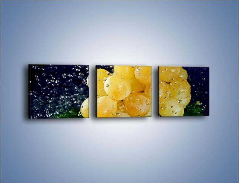 Obraz na płótnie – Słodkie winogrona z miętą – trzyczęściowy JN286W1