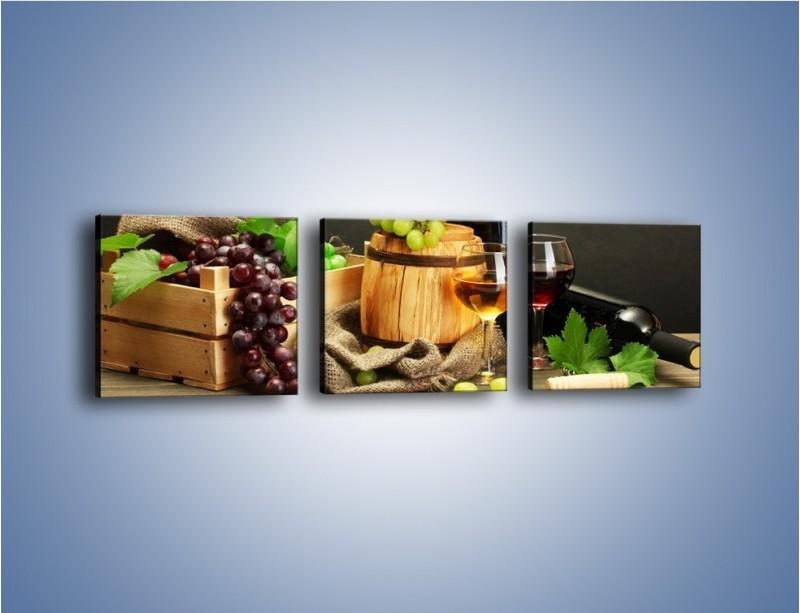 Obraz na płótnie – Wytrawne smaki wina – trzyczęściowy JN289W1