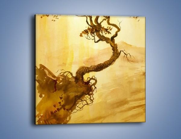 Obraz na płótnie – Drzewo nieźle zakręcone – jednoczęściowy kwadratowy GR060