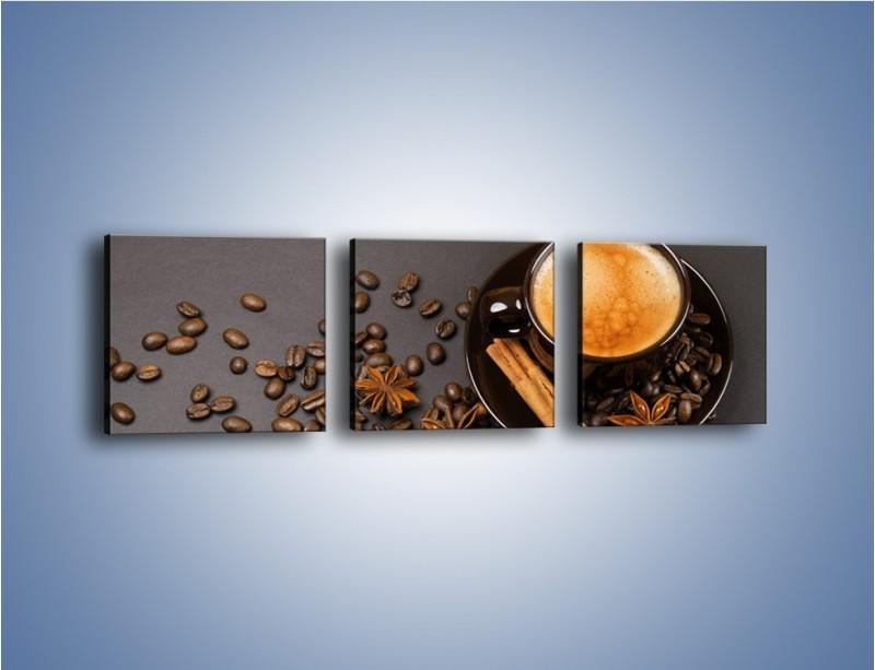 Obraz na płótnie – Kawa z goździkiem – trzyczęściowy JN349W1