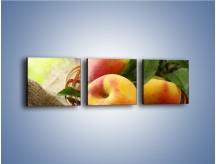 Obraz na płótnie – Dojrzałe jabłka w koszu – trzyczęściowy JN390W1