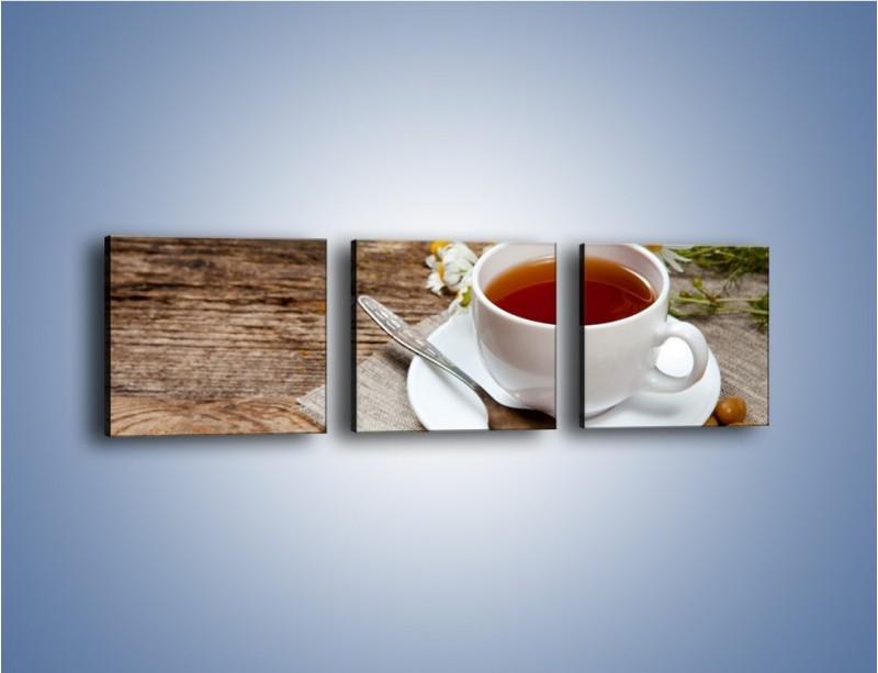 Obraz na płótnie – Herbata wśród stokrotek – trzyczęściowy JN413W1