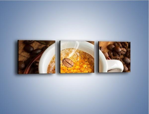 Obraz na płótnie – Ziarna zatopione w kawie – trzyczęściowy JN416W1