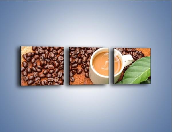 Obraz na płótnie – Ziarna kawy pod liściem – trzyczęściowy JN417W1