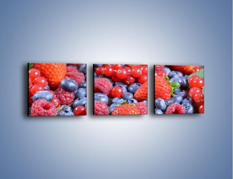 Obraz na płótnie – Owoce z działki – trzyczęściowy JN422W1
