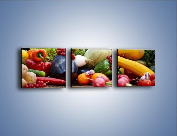 Obraz na płótnie – Warzywa na ogrodowym stole – trzyczęściowy JN483W1