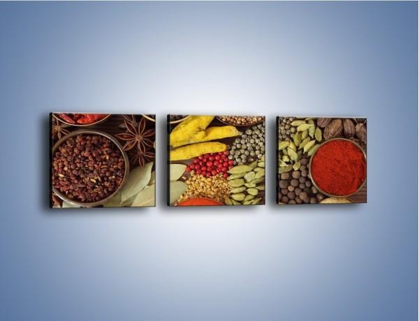 Obraz na płótnie – Przyprawy niezbędne w kuchni – trzyczęściowy JN490W1